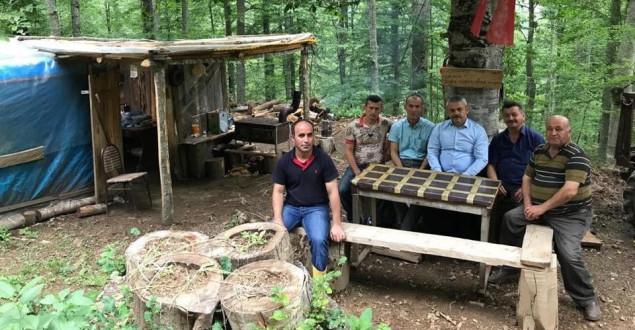 Milletvekili Ünal'dan Sayvanda Orman Köylüsüne Ziyaret