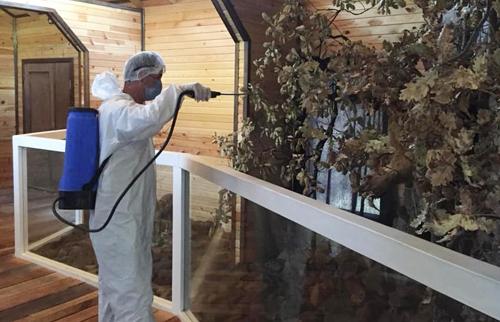 Bitki ve Hayvan Müzesi Dezenfekte Edildi